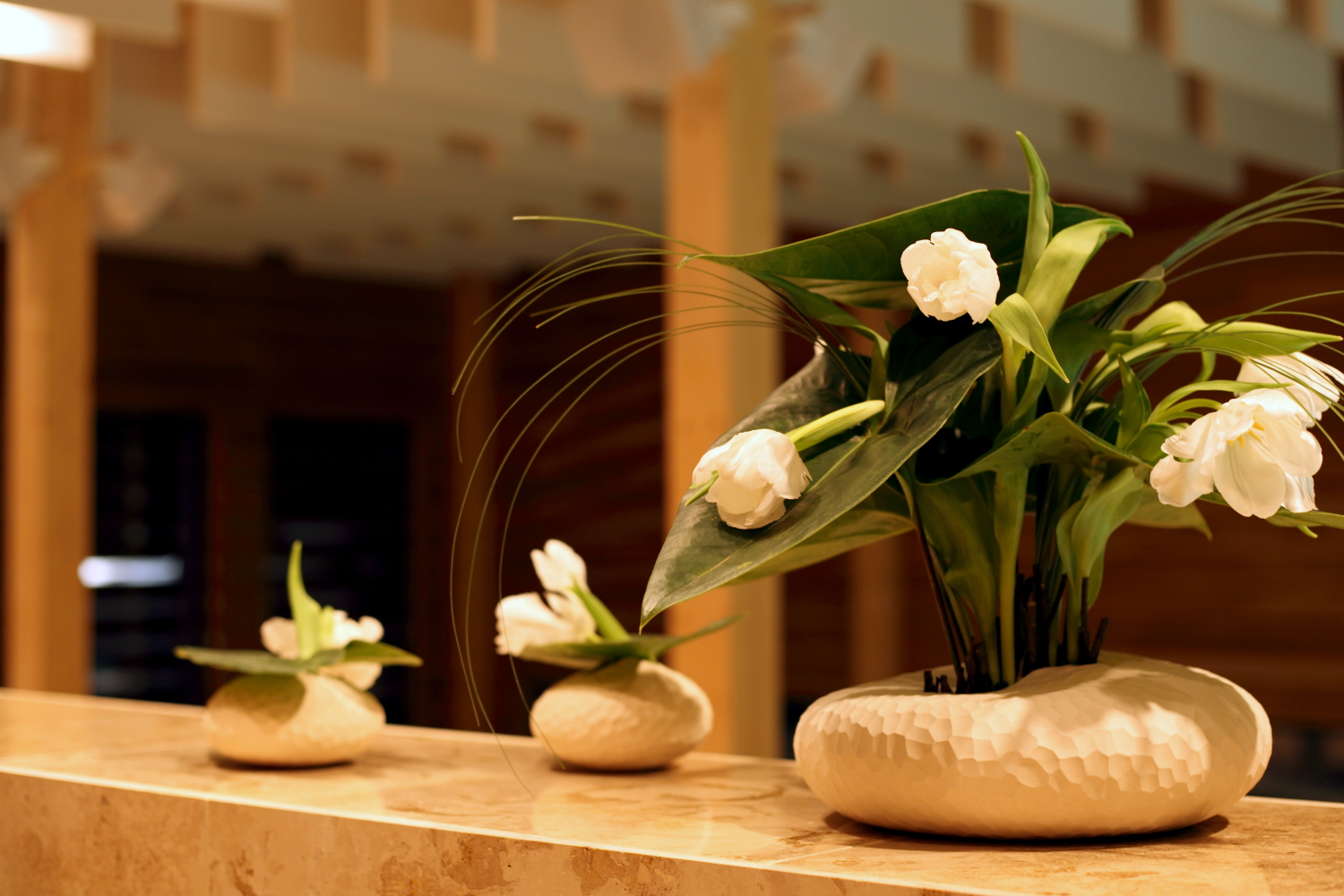 Kubija hotel and nature spa in v ru estonia spas in estonia for Health spa vacation packages